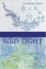 front-cover-bird-light-generic-v9-0_3