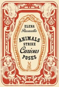 animals-passarello